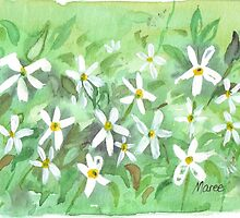 Starry Jasmine by Maree  Clarkson