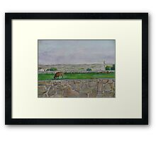 Country view near Galway Framed Print