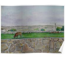 Country view near Galway Poster