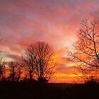 Red, Yellow and Orange Sky by debbiedoda