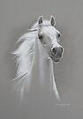 Equus Spirit by Heidi Schwandt Garner