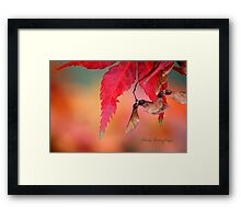 Shades of Fall Framed Print
