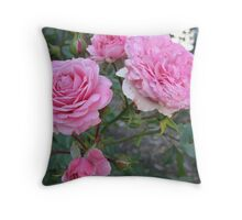 Pink Cabbage Patch Roses Throw Pillow