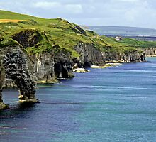 Cliffs Antrim coastline by Carol  Lewsley