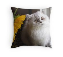 Paris in the Window Throw Pillow