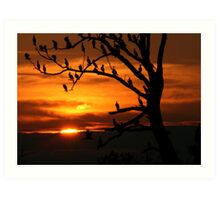 LAST LIGHT - NATURAL COLOR Art Print