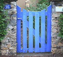 La Porte Bleue by Janet Hamman Hunt