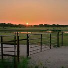 East Texas Sunset by Susan Russell