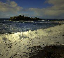 OCEAN WAVES by leonie7