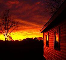 My Mendon Sunlight by Terra Berlinski