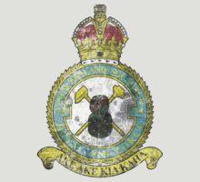 75(NZ) Squadron RAF Full Colour crest VINTAGE by 75nzsquadron
