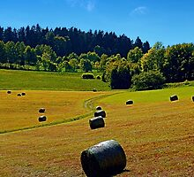 Dance of the hay bales by Patrick Jobst