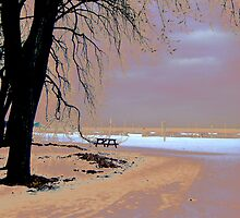 Winter at the Beach by PPPhotoArt