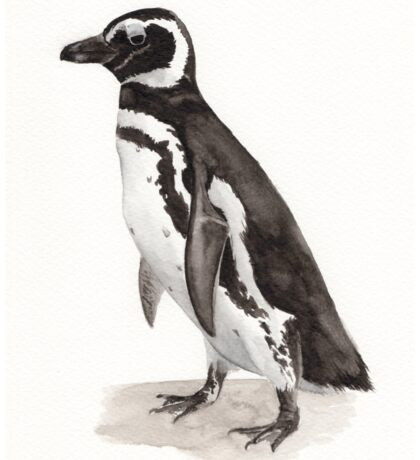 Penguin Watercolor Painting Sticker