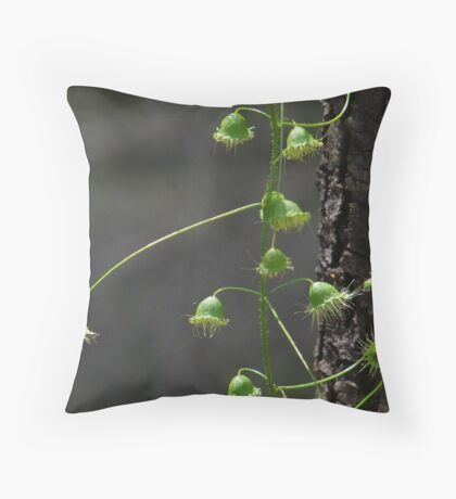 sundew plant Throw Pillow