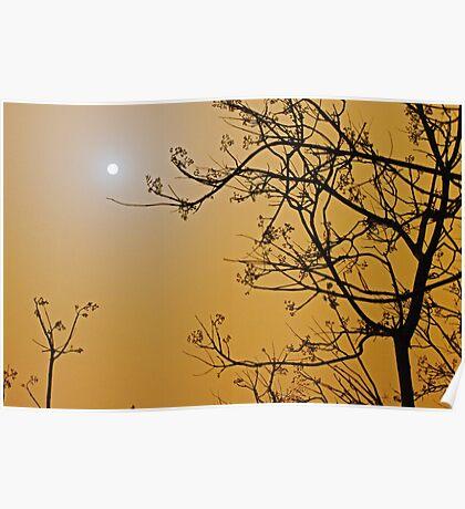 Queensland dust storm Poster