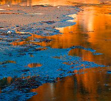 Goleta Slough by Eyal Nahmias