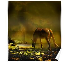 Lonely Horse Poster