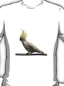 Zombie Cockatoo T-Shirt
