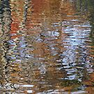 Autumn ripples 2 by Kirstyshots