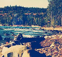 Rocky Shores of Lake Superior by Phil Perkins