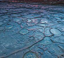 Precious pools by Neil