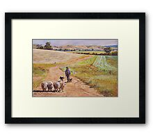 Moving the Rams (Whiteheads Creek) Framed Print