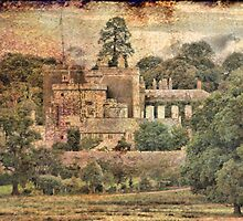 Powderham Castle by Catherine Hamilton-Veal  ©