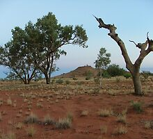Near Palmer River, Central Australia. View 2 by Liz Worth