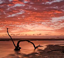 Nudgee Beach 1 by amko