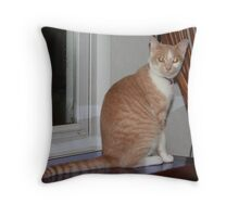 You say Something to Me? 09 Throw Pillow