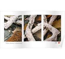 """""""Driftwood Abstractions Triptych"""" Poster"""