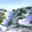 Ocean Reef Dune #30 by Diko