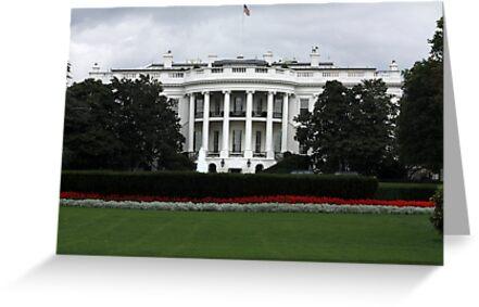 The WHITE HOUSE by AnnDixon