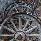 Dray Wheels by Werner Padarin