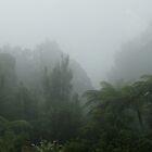 Kaimai Ranges near Tauranga, New Zealand by Sandra  Sengstock-Miller