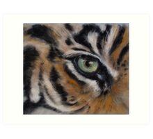 tiger eye Art Print