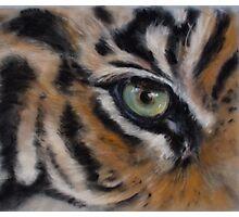 tiger eye Photographic Print