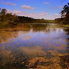 Enchanted Lake by Scott Irvine