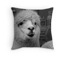 Lama Land Throw Pillow