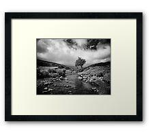 Embracing the coming rain Framed Print
