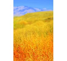 High Desert Autumn Photographic Print