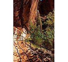 The Weeping Rock AT Zion © Photographic Print