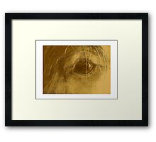 Horsepia - Prize-winning  Graphite and Watercolor on Paper 5x7inches  Framed Print