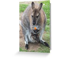 What's That You're Eating Mum? - Wallaby Greeting Card