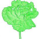 Green carnation by Sandra O'Connor