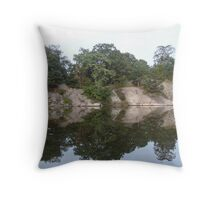 Reflecting Greenwich Throw Pillow