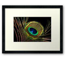 peacock colors Framed Print