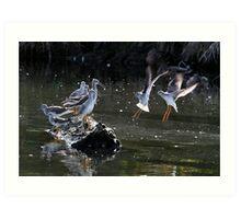"""""""May We Join You?"""" Greater and Lesser Yellowlegs Art Print"""