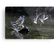 """""""May We Join You?"""" Greater and Lesser Yellowlegs Metal Print"""